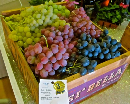 Award winning table grapes perkin' our appetities...
