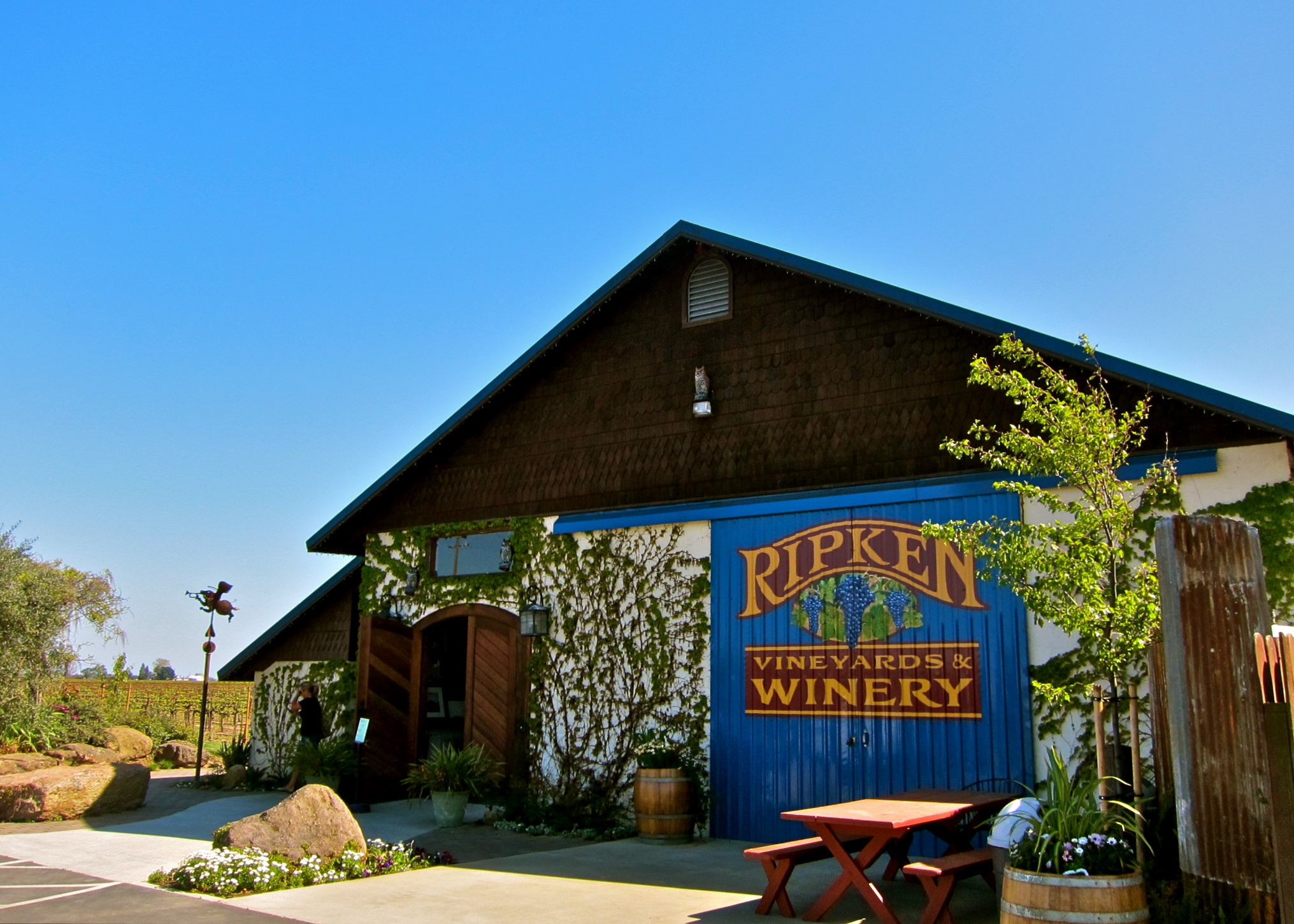 Ripken makes DIY, unconscious wines
