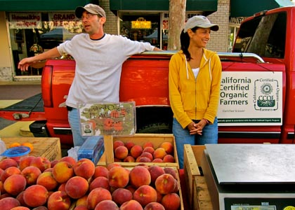 Lodi farmers market, June