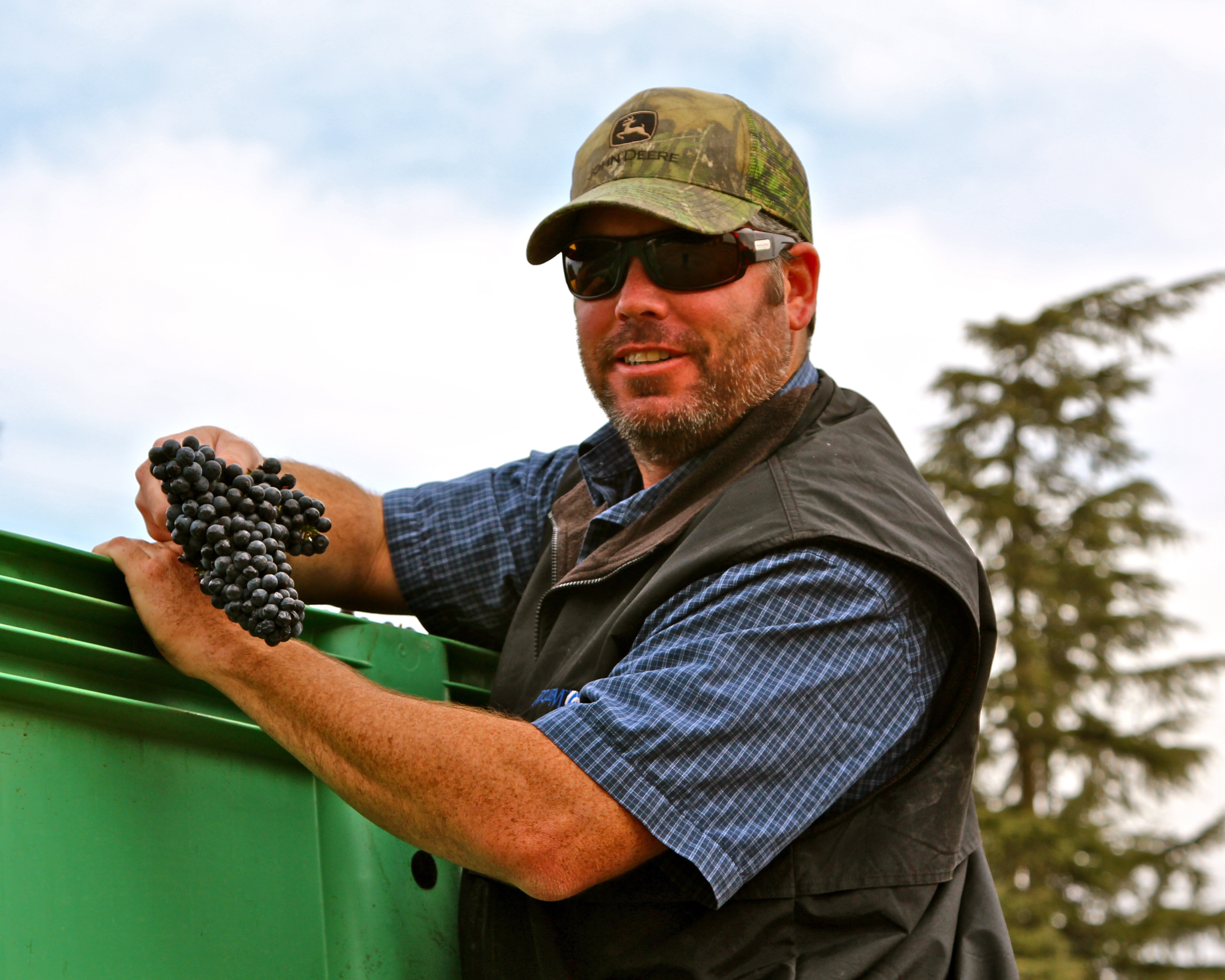 Lodi Wine Commission Blog Phillips Farms Finishing Up On Phenomenal 2012 Harvest