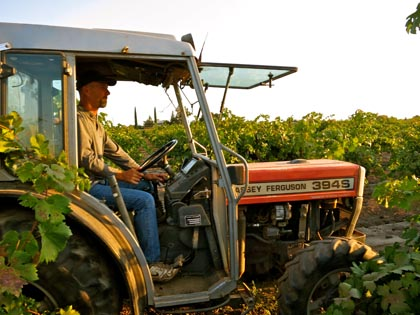 Todd Maley tractoring his macro-bins through vineyard