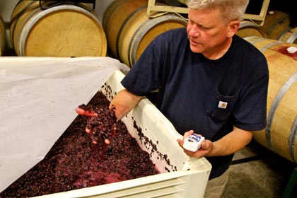 m2′s Layne Montgomery takes measure of just-crushed Soucie Vineyard Zinfandel (picked September 13)