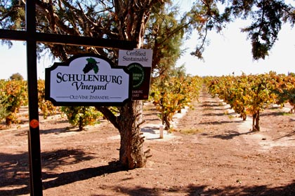 Schulenburg Vineyard