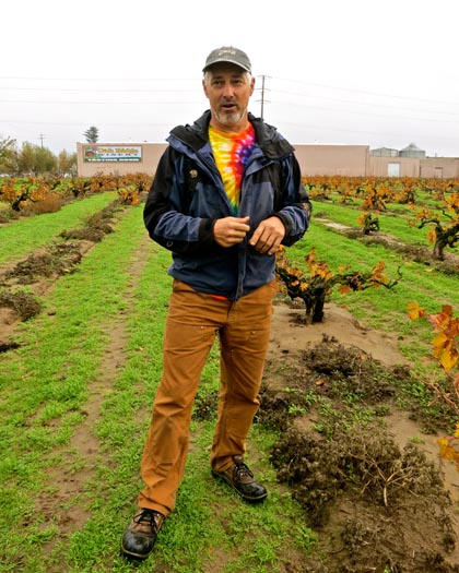 Macchia's Tim Holdener among old vine Zinfandel in Noma Ranch