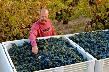 Todd Maley with his Weget Vineyard Zinfandel
