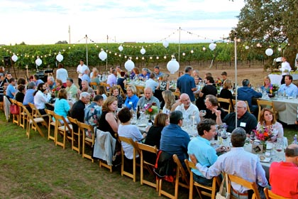 Late August: harvest dinner (for grower and winery clients) in Bokisch Ranches' Terra Alta Vineyard