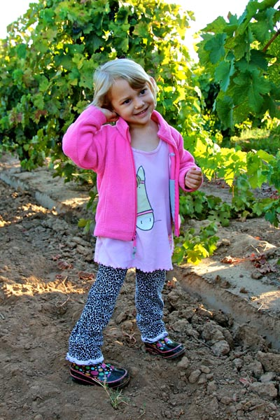 Lodi's future, as it has been since the 1850s, lies in the next generation — like Chiara Colarossi, here checking out the 2013 Zinfandel harvest in Bob and Alison Colarossi's Stellina estate