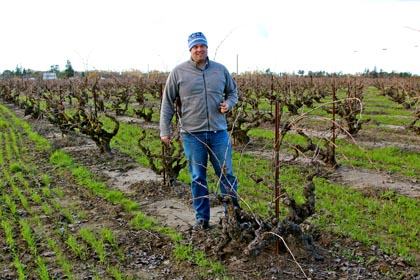 "Turley Wine Cellars' Tegan Passalacqua (standing in his Kirschenmann Vineyard, located on Lodi's east side) will be on the ""Lodi Outsiders"" panel as part of 2014′s Lodi ZinFest Wine School"