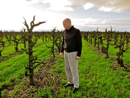Winemaker Michael McCay in TruLux Vineyard