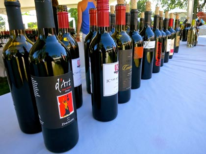 Zin soldiers, all lined up at Vintners Grille