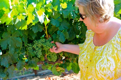 Acquiesce's Sue Tipton with her estate grown Picpoul Blanc