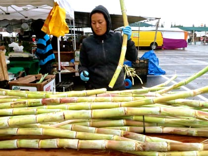 Sugar cane at Galt Market