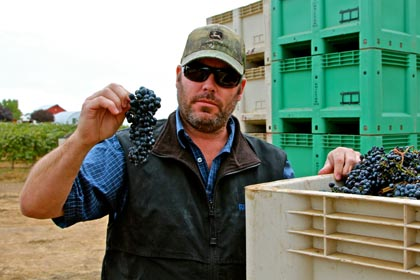 Michael David's Kevin Phillips with 2012 Petite Sirah