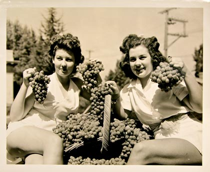 Lodi Tokay grape queens, 1941