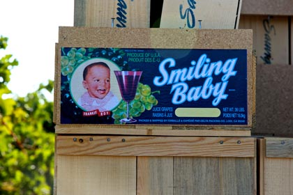 Another Delta Packing Co. label: Smiling Baby!