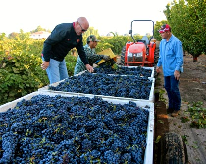 September 3: McCay Cellars' Mike McCay (left) and grower Craig Rous (right) with Rous Vineyard Zinfandel