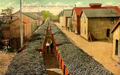 19th century postcard of El Pinal Winery, located along railroad in Stockton