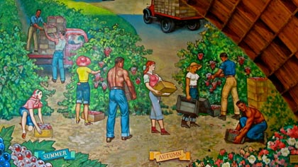 San Francisco artist John Garth's 1960 mural in the Lodi Grape Festival hall, depicting Lodi seasons of yesteryear.