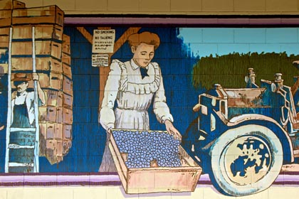 Downtown Lodi mural, copied from a photo by J. Pitcher Spooner originally displayed at the 1907 Tokay Carnival, depicting a grape packer working for E.G. Williams & Sons