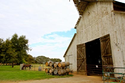 The old barn in Lodi's Jessie's Grove dates back to the turn of the last century