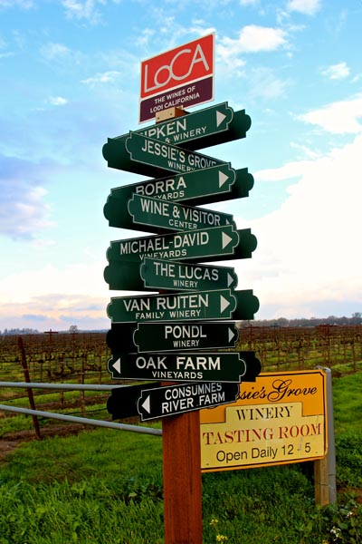Hello and so long from Lodi wine country!
