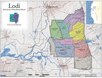 Lodi American Viticulture Areas