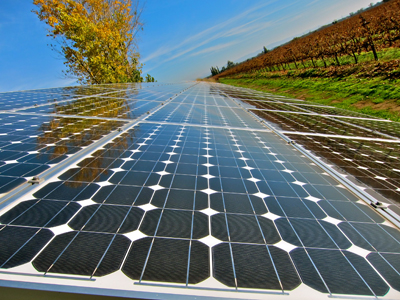 Self-sustaining solar power at certified sustainably farmed  Vino Farms' Grand Vin Lands Vineyard