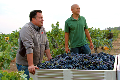 "Artisanal winemakers Tegan Passalacqua (Turley Wine Cellars) and Emiliano Castanon (Michael David Winery) harvesting Cinsaut in Bechthold Vineyard, California's 2014 ""Vineyard of the Year"""