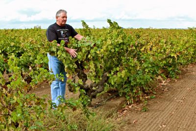 Lance Randolph with his Periano family's Zinfandel, planted in the 1890s