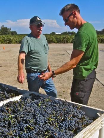 Lodi Winegrape Commission - Blog - Borra's Markus Niggli