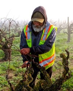 Lodi Wine Commission Blog How Warm Or Cool Is Lodi - Us map winkler climate regions