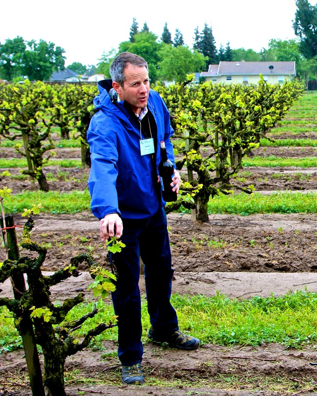 Chad Joseph in Wegat Vineyard