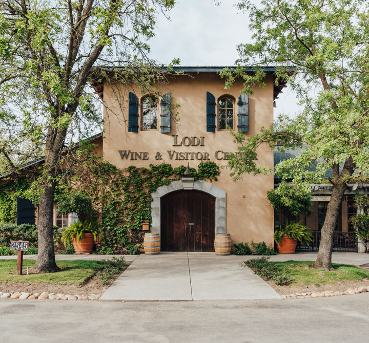 Visit the Lodi Wine Region